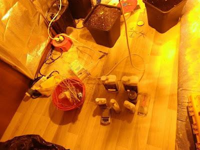 Γ.Π.Α.Δ. ΚΕΝΤΡ. ΜΑΚΕΔΟΝΙΑΣ:Εντοπίστηκε εγκατάσταση υδροπονικής καλλιέργειας κάνναβης μέσα σε σπίτι σε περιοχή της Θεσσαλονίκης