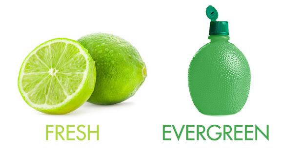 perbedaan konten yang evergreen dan fresh