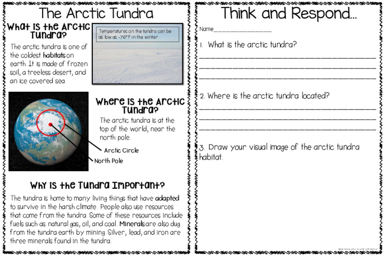 The Razzle Dazzle Classroom Arctic Animals Extravaganza