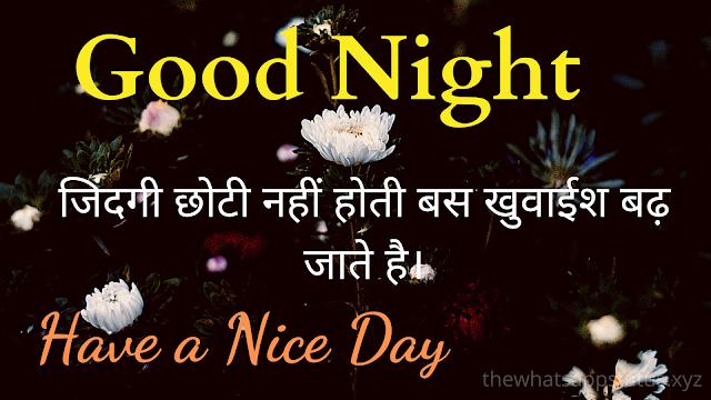 Best good night shayari images in hindi (10)