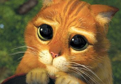 http://1.bp.blogspot.com/-QBwVjQEfRTw/VDAK-RmpseI/AAAAAAAAJOE/NxADD3Ok9tY/s1600/big_eyes_cat.png
