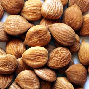 apricot kernels online india