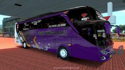 Skin Agam Tungga Jaya JB3 SHD
