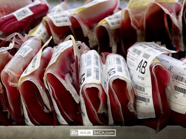 Sering Dianggap Sepele, Inilah Alasan Kenapa Tahu Golongan Darah Itu Penting!