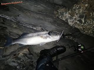 0597 - Vai peixinhos...