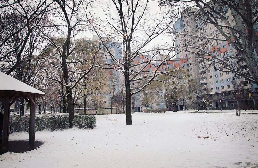 Fun Things to Do in Winter, vienna snow