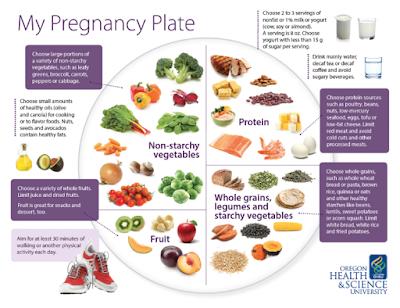 Panduan Lengkap Makanan Sehat Untuk Ibu Hamil