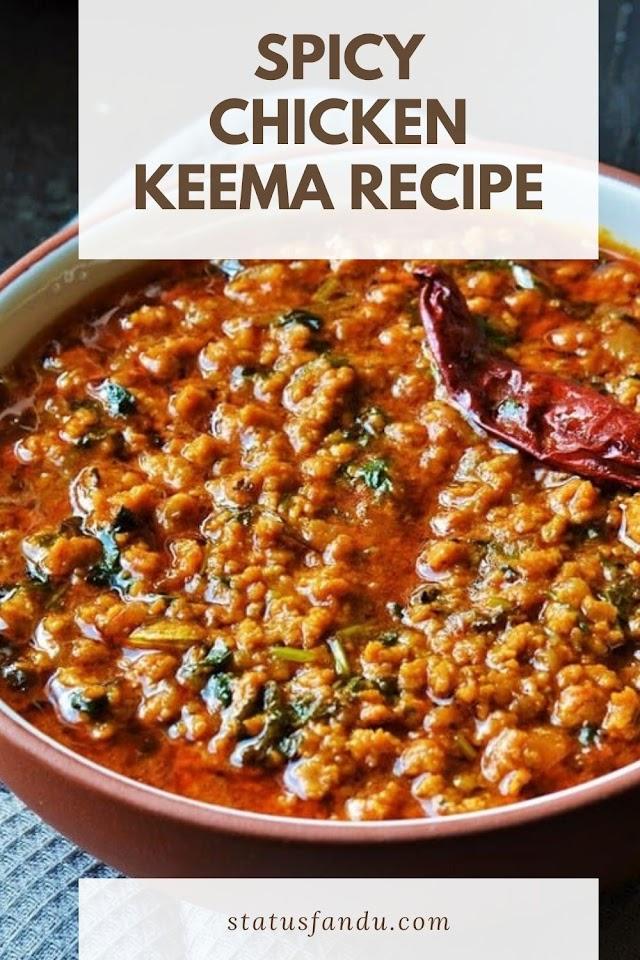Spicy Chicken Keema Recipe Chicken Semi Gravy Recipe Keema Recipe