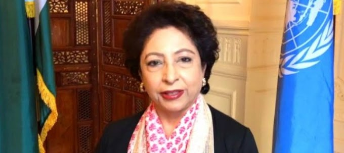 The UN bloc should be addressed to visit Kashmir: Maleeha Lodhi