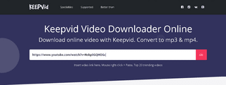 paste video url