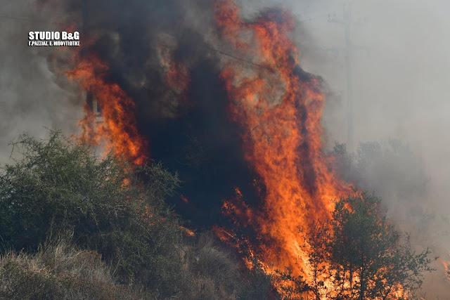 Αργολίδα: Νέα πυρκαγιά στην Μαραθιά