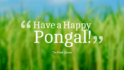 Happy Pongal Images in English