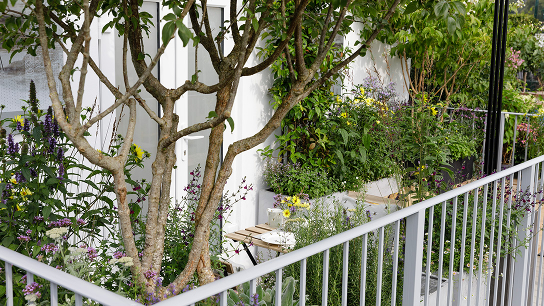 Jardines de bolsillo, jardines en balcones diseñados por paisajistas británicos para RHS Chelsea Flower Show 2021, el festival de primavera que este año se celebra en otoño