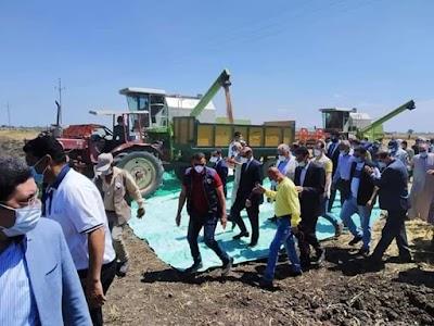 القصير: رفع كفاءة مزارع الإنتاج الحيواني التابعة للوزارة