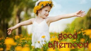 good afternoon rose image