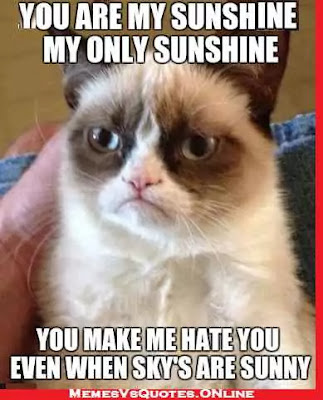 Good Morning  beautiful memes for her, you are my sunshine