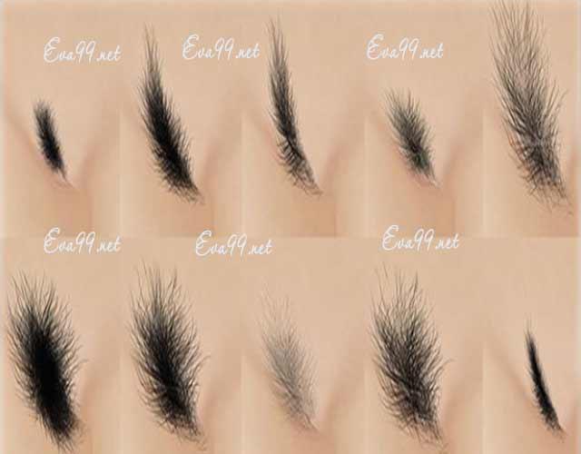 7 Cách tỉa lông mu cho phái nữ ít đau
