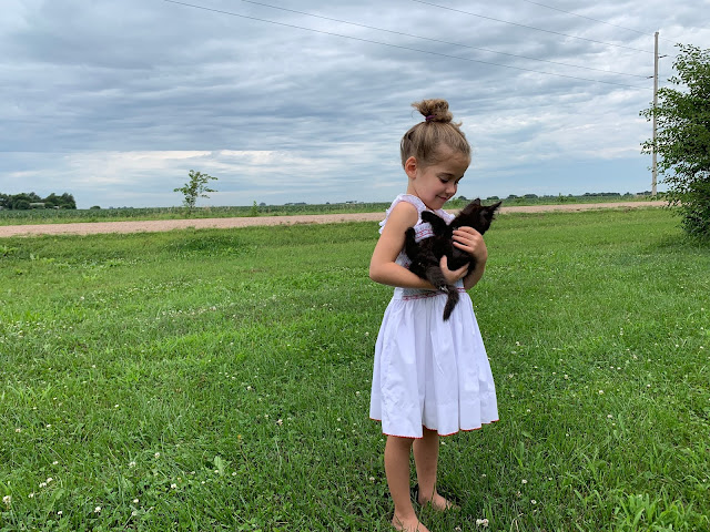 my youngest holding a kitten on a farm
