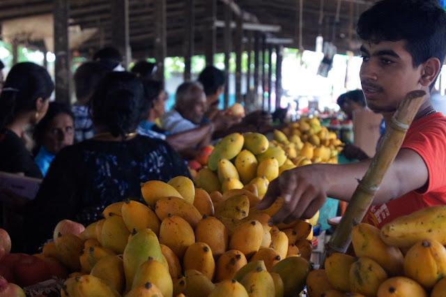 Markt in Jaffna: Ein Verkäufer preist seine Mangos an.