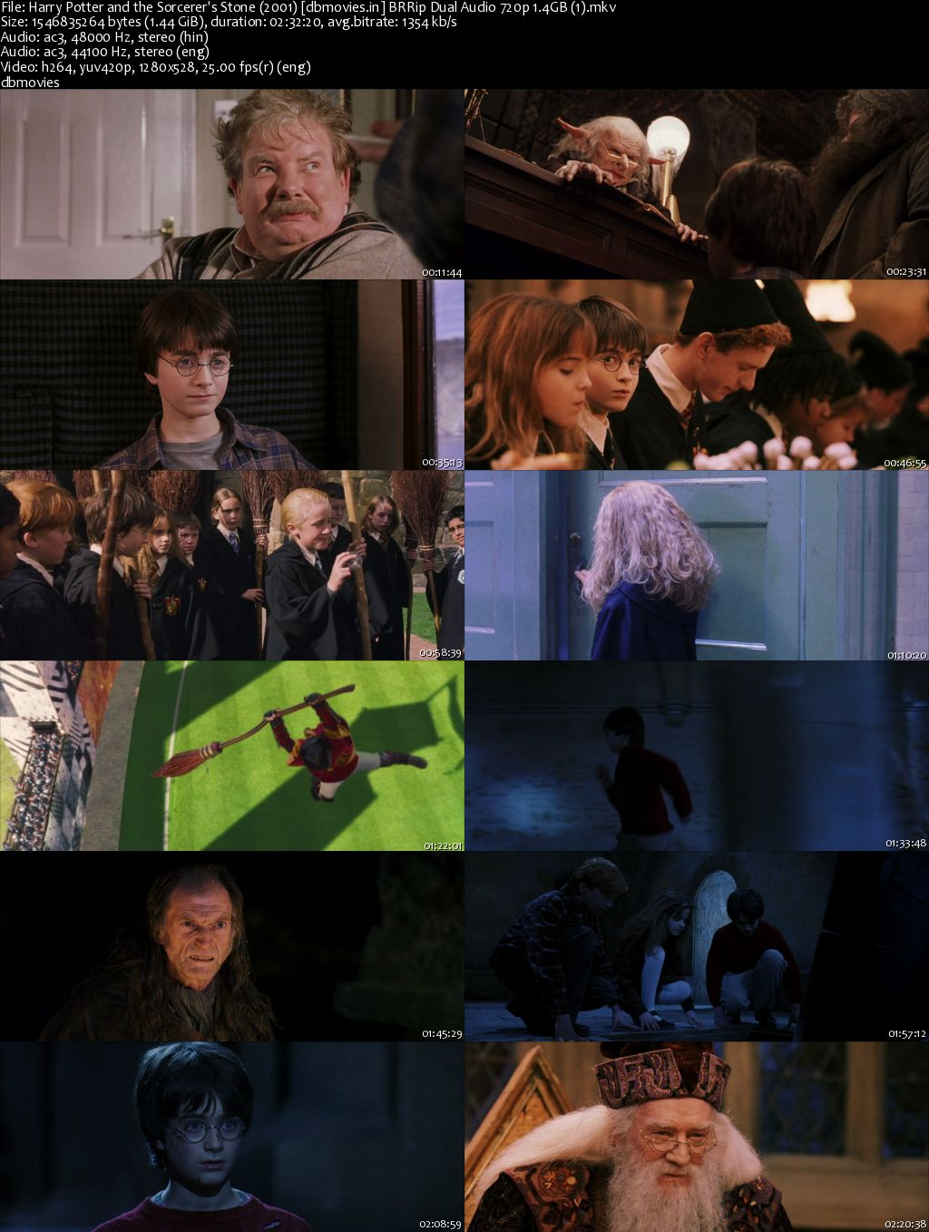 scrren shot Harry Potter and the Sorcerer's Stone 2001 Full Movie Dual Audio Hindi Download 720p
