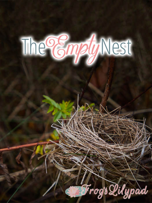 The Empty Nest - A Little From My Journal