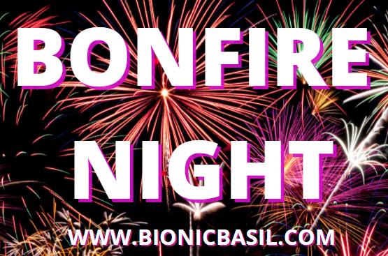 Bonfire Night Banner ©BionicBasil®
