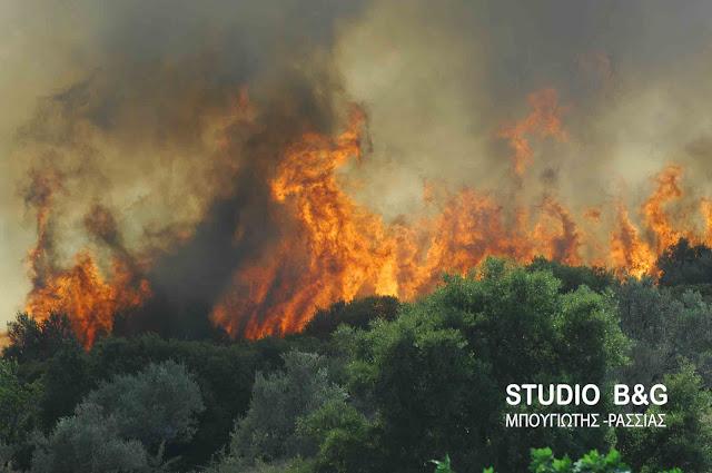 Πυρκαγιά στη Λυρκεία Αργολίδας - Ρίψεις από αεροσκάφη