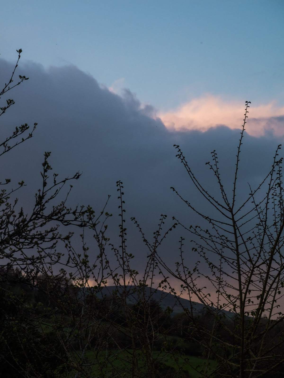 Dig dark cloud over a mountain hidden behind bare tree branches.