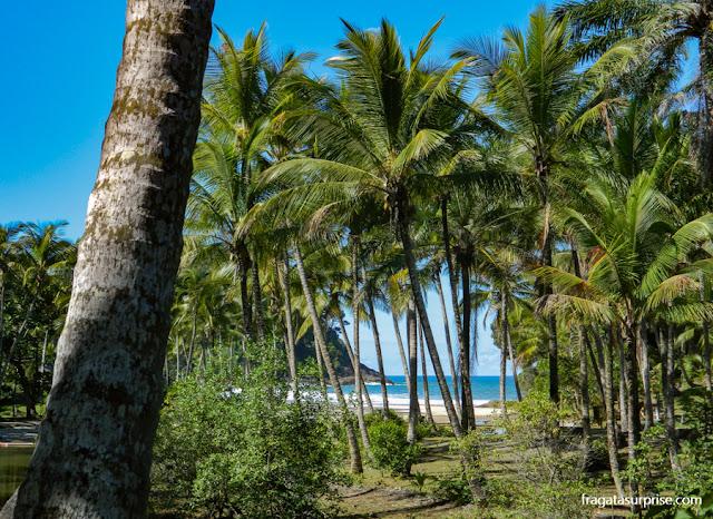 Trilha para a Praia de São José, Itacaré, Bahia