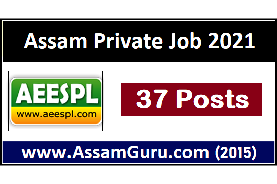 assam-equipment-energy-services-pvt-ltd-job