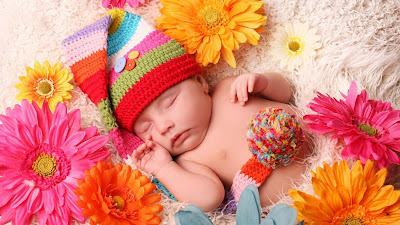 babysleeping-gerbera-flowers