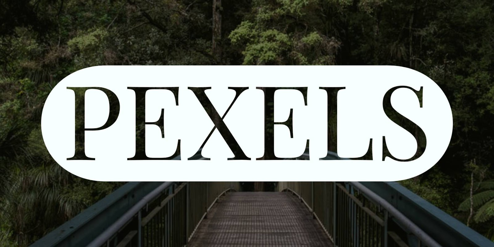 Pexels - Free Stock Photography Images Sites