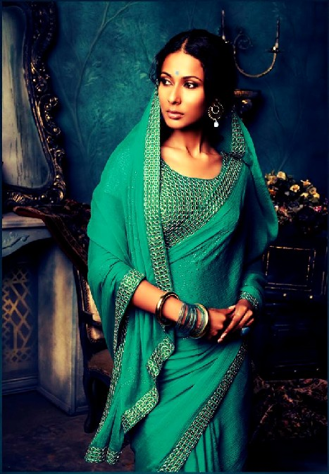 Laxmipati Embroidered Saree Collection 2013 2014