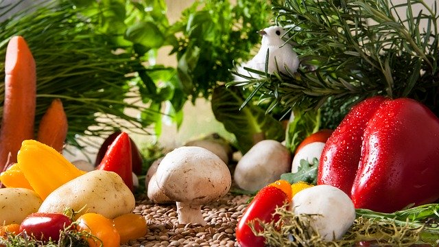 How to Start a Vegetable Garden Business