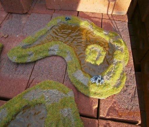 Making Ponds and Swamps picture 26