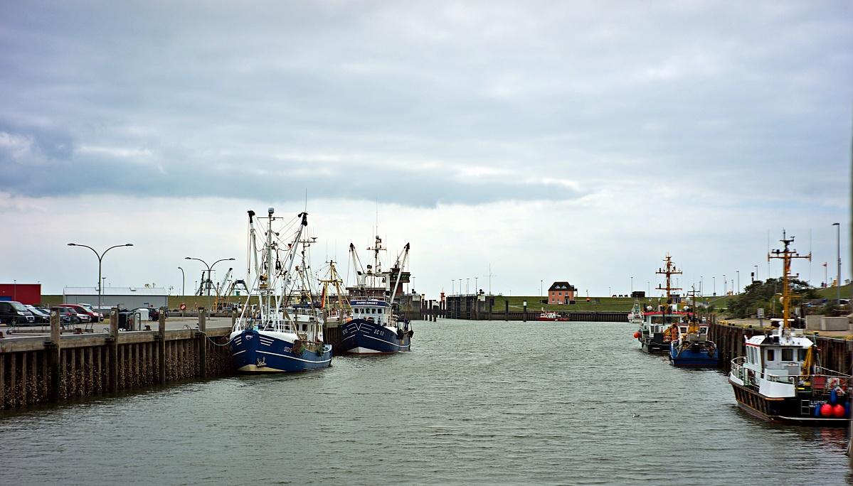 Im Büsumer Hafen (8)