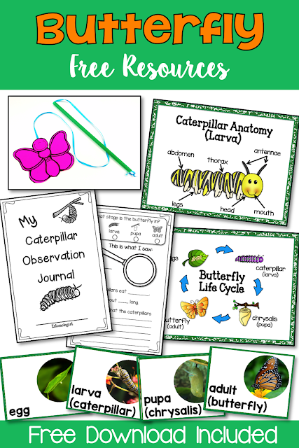 This free resource provides you with: 'My Observation Journal, 2 anchor posters, photo life cycle cards, butterfly craft and suggested activities with teacher tips.