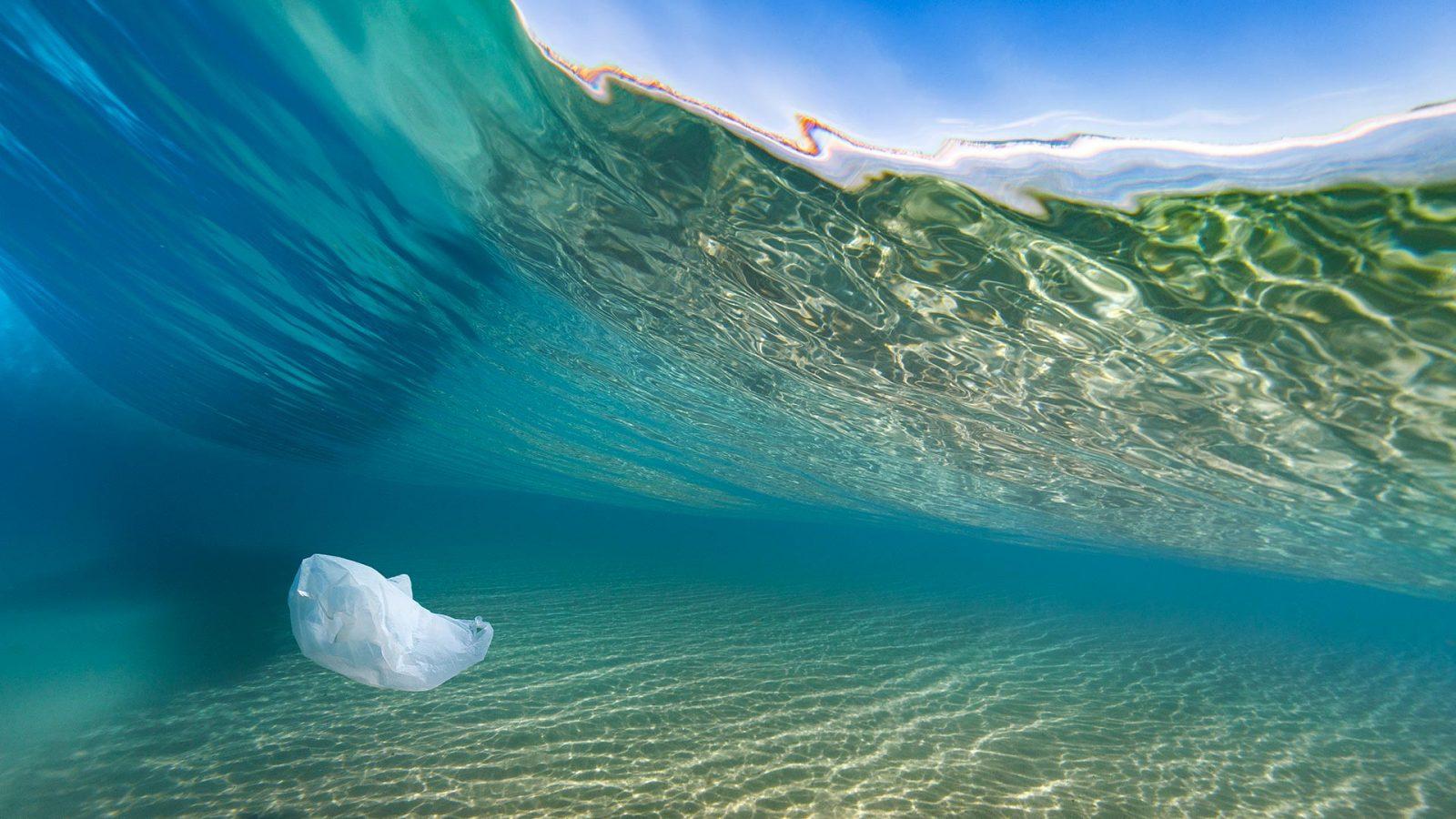Dulu, Kantong Plastik Diciptakan untuk Selamatkan Lingkungan