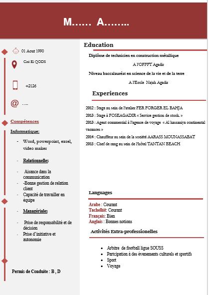 نموذج سيرة ذاتية جاهز للكتابة pdf
