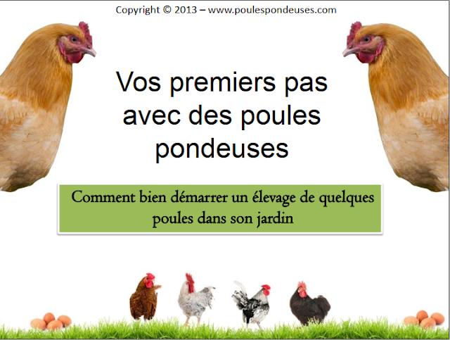 Premiers pas avec vos poules pondeuses - WWW.VETBOOKSTORE.COM