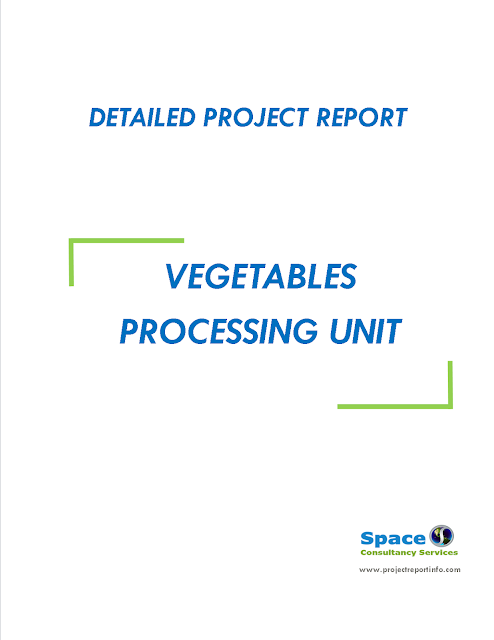 Project Report on Vegetables Processing Unit