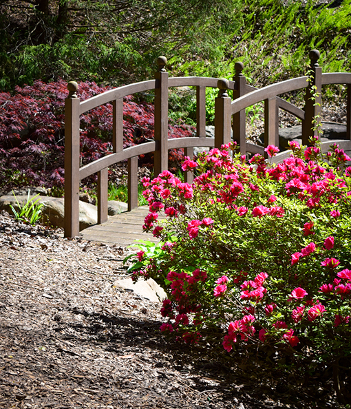 Frank A. Smith Memorial Garden | Photo: Travis Swann Taylor