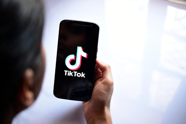 Top 10 TikTok Statistics For Content Marketers (infographic)