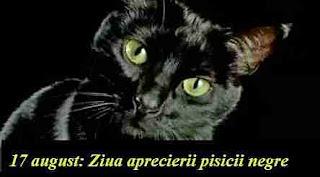 17 august: Ziua aprecierii pisicii negre