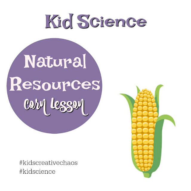 Science Lesson Natural Resources Corn Muffin Recipe