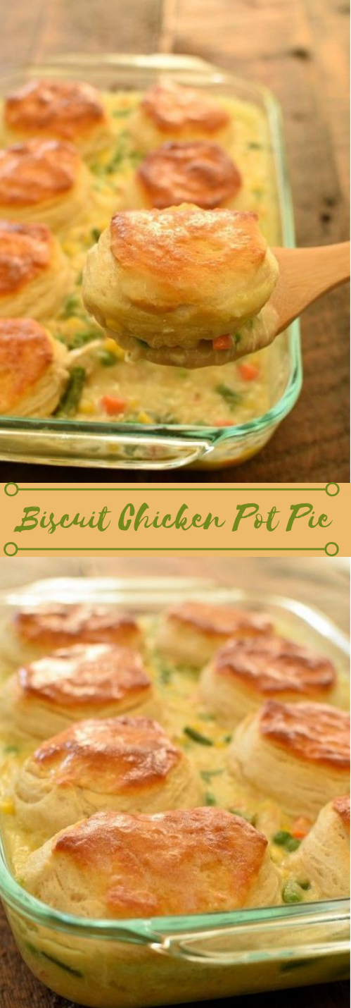 Biscuit Chicken Pot Pie #biscuit #dinner #healthyrecipe #food #cooking