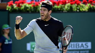 Del Potro targeting fitness, not second slam title