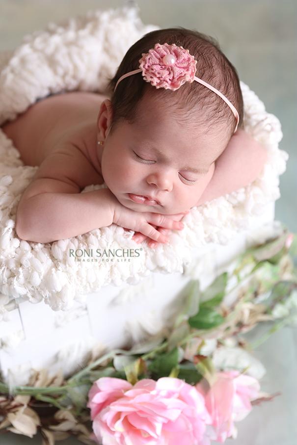 ensaio de bebê recém-nascido,newborn,newborn sp
