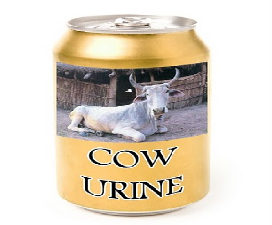 Cow Urine In Indian Food