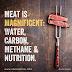 A carne é magnífica: água, carbono, metano e nutrição.